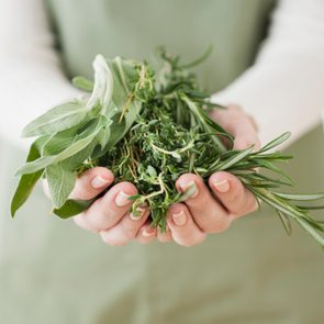 close up shot of woman holding herbs