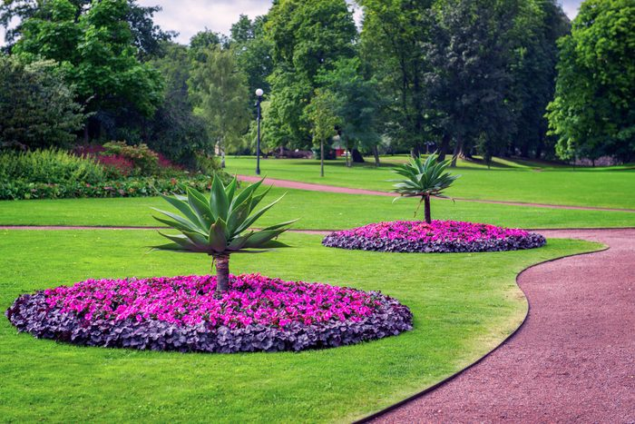 manicured landscape with trees, grass and flowers