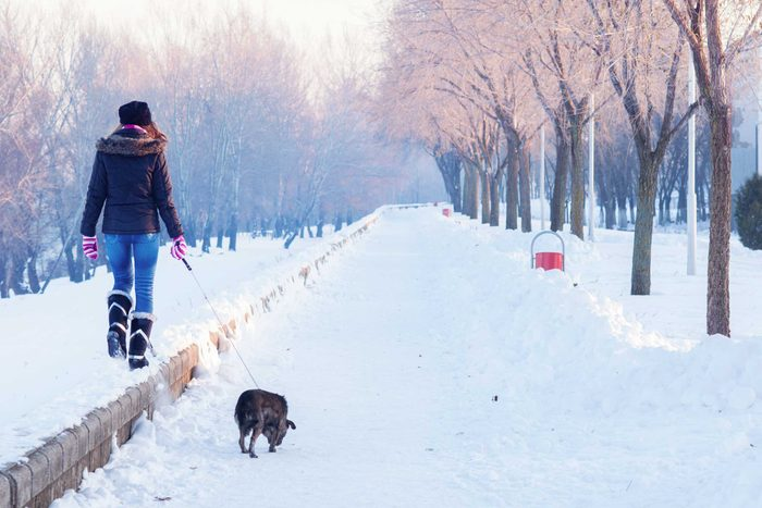 woman walking her dog on a snowy path