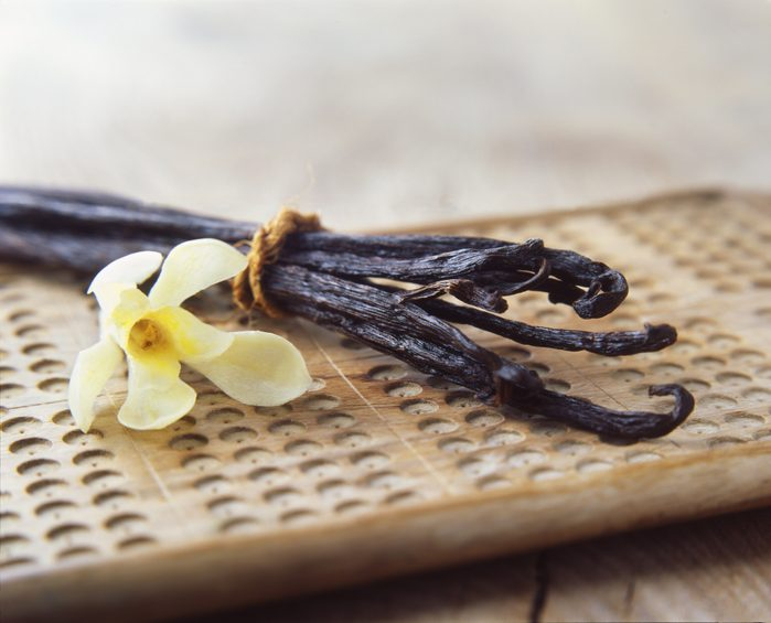 vanilla beans and flower close up
