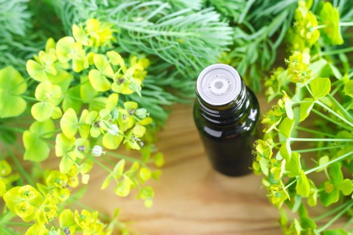 bottle of cypress oil surrounded by greens on table