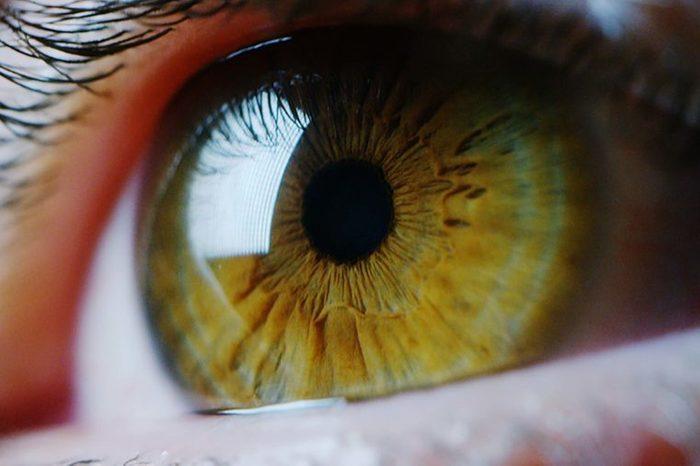 close-up of hazel eye
