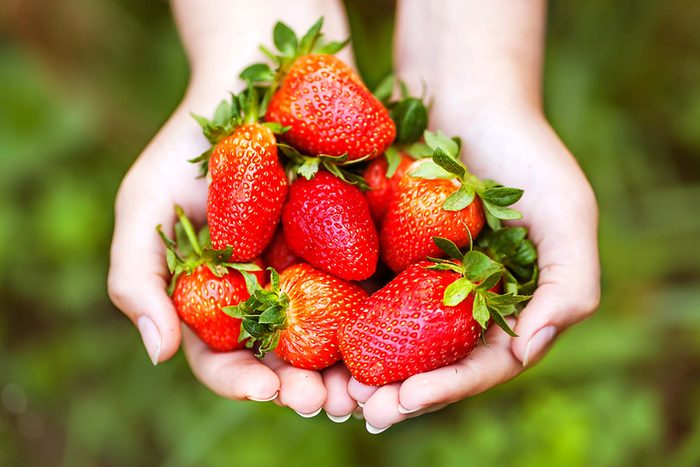 Two hands holding strawberries