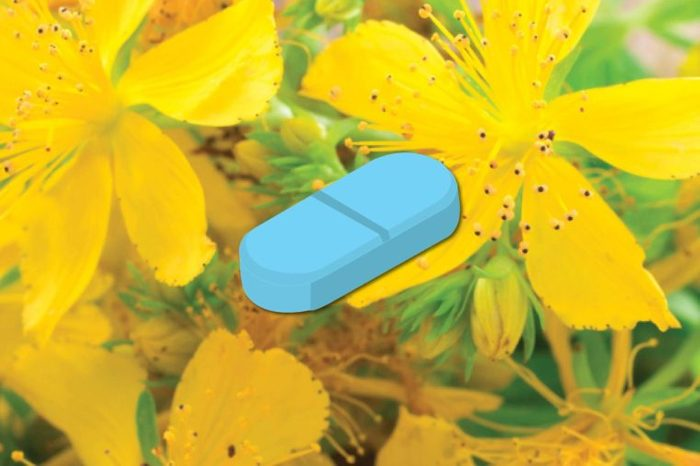 Illustration of St. John's wort supplement against a background of the flowering plant from which it is derived.
