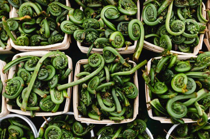 fiddlehead fern foods