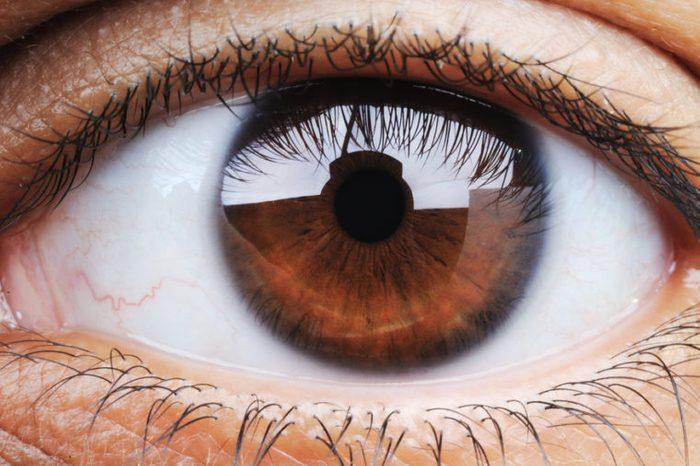 Closeup of large brown eye.