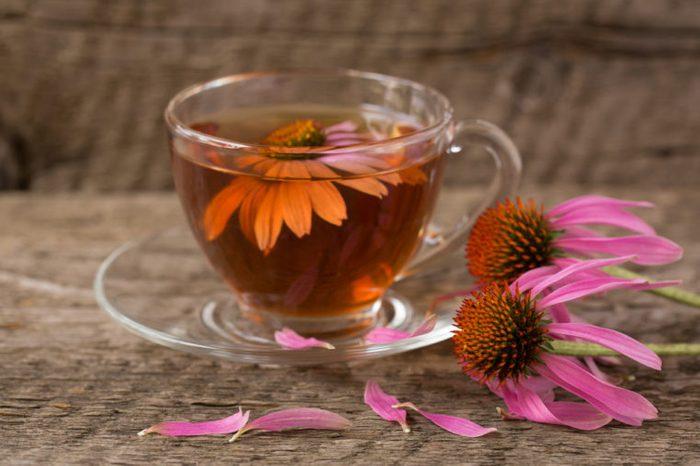Glass mug of echinacea tea next to echinacea flower
