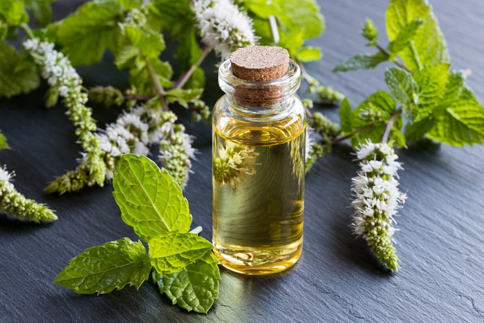 A transparent bottle of peppermint essential oil with blooming peppermint twigs