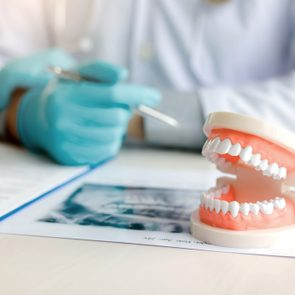 dental teeth model with dentist in the background