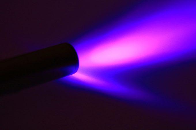 UV black light flashlight