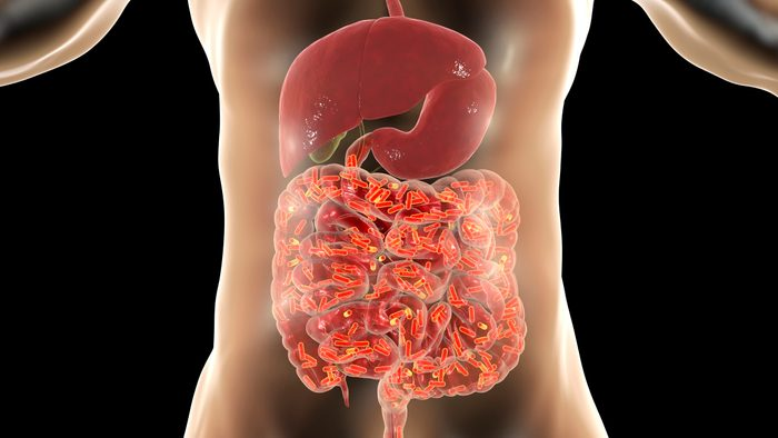 the science of IBS microbiome gut health