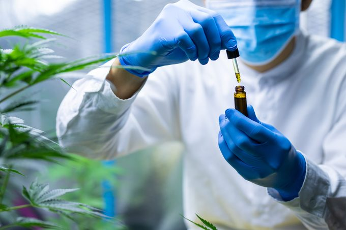 medical scientist with mask and gloves checking hemp oil