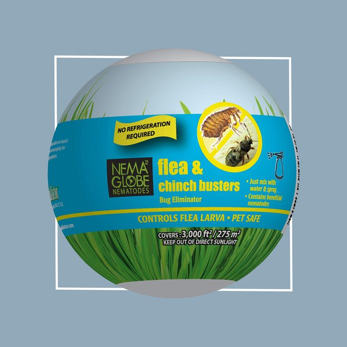 Nema Globe 25 Million Beneficial Nematodes for your garden