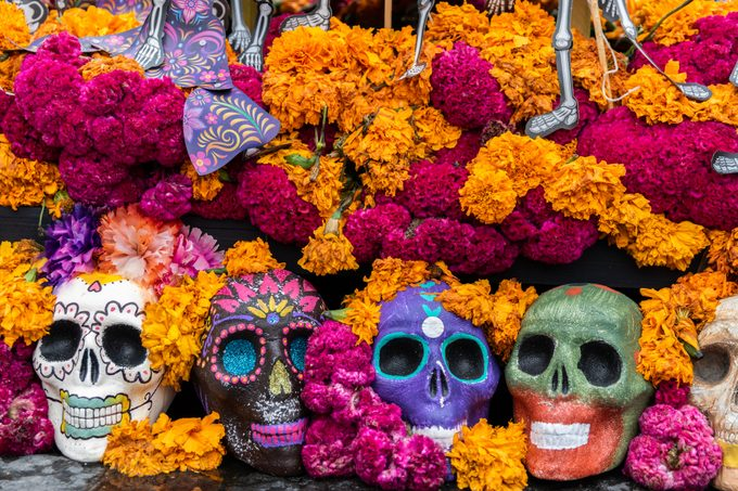Day of the Dead skulls and flowers