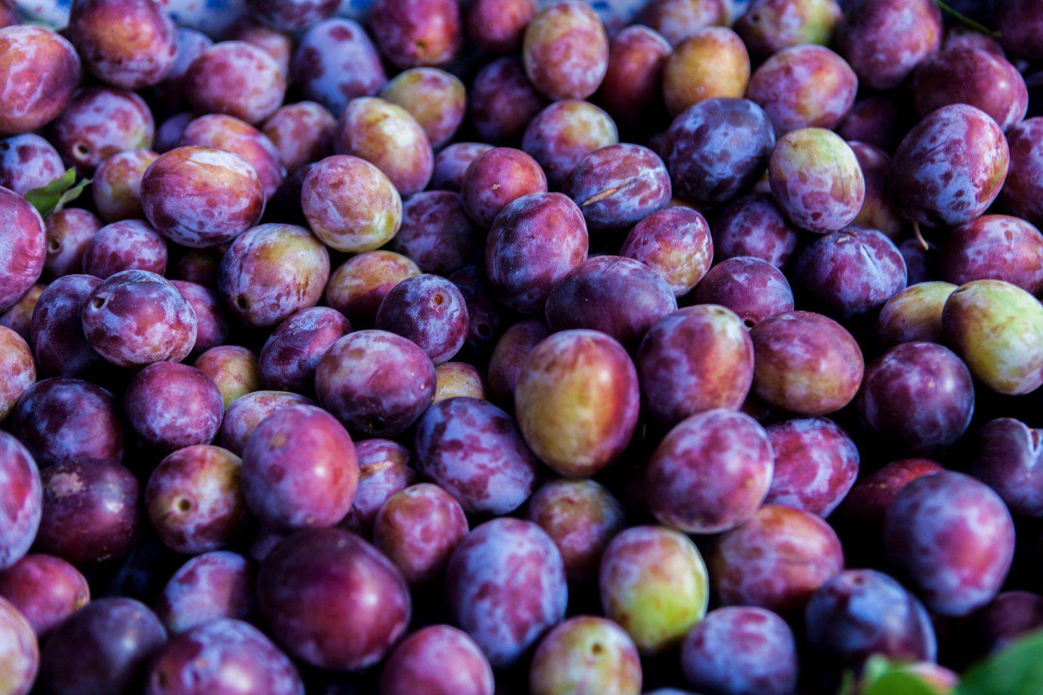 Full-frame of damson plums.