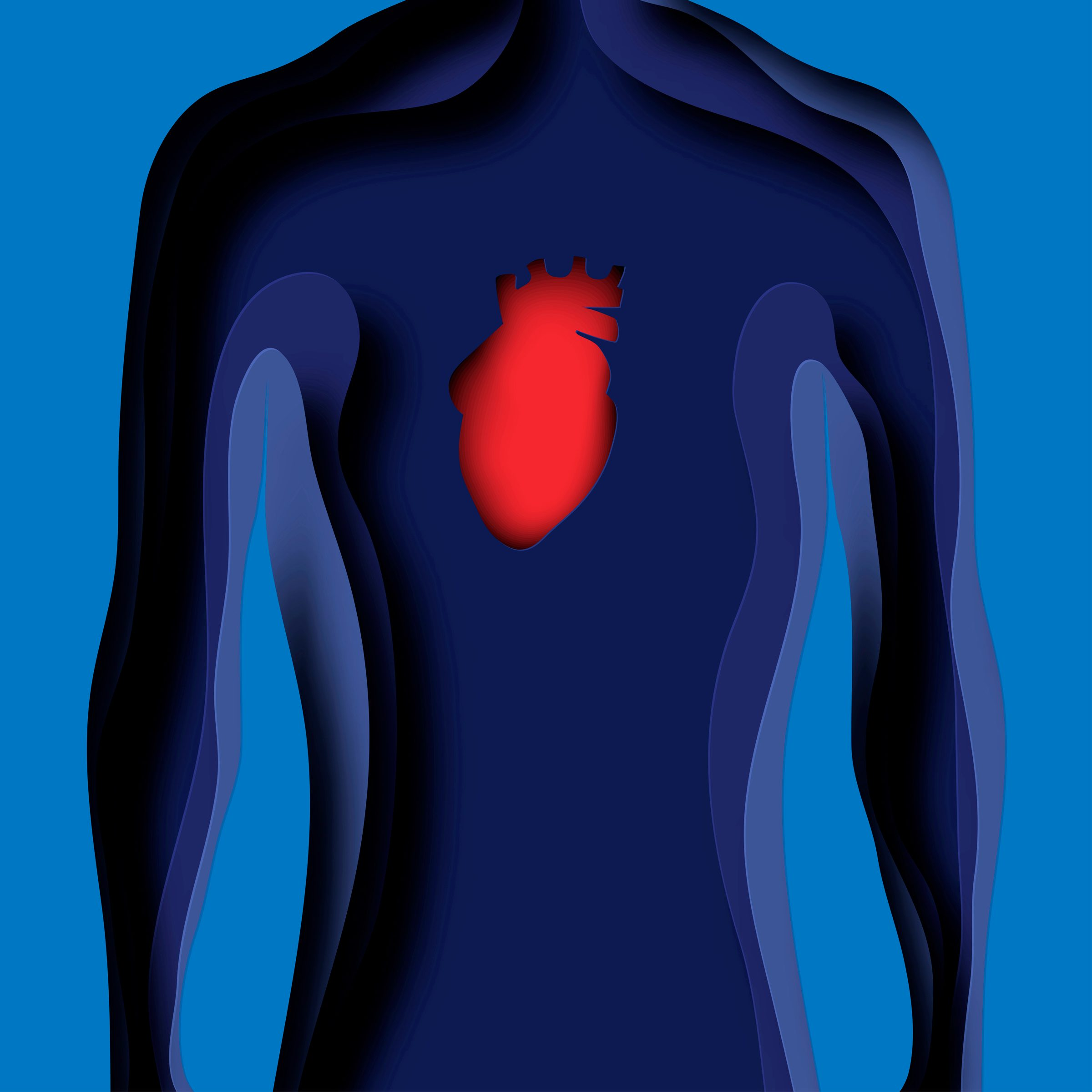 paper illustration of human heart