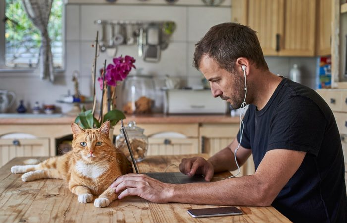 Man working from home, sitting at kitchen table with cat, using laptop