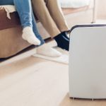Air Purifier vs. Humidifier: Which is Right for You?