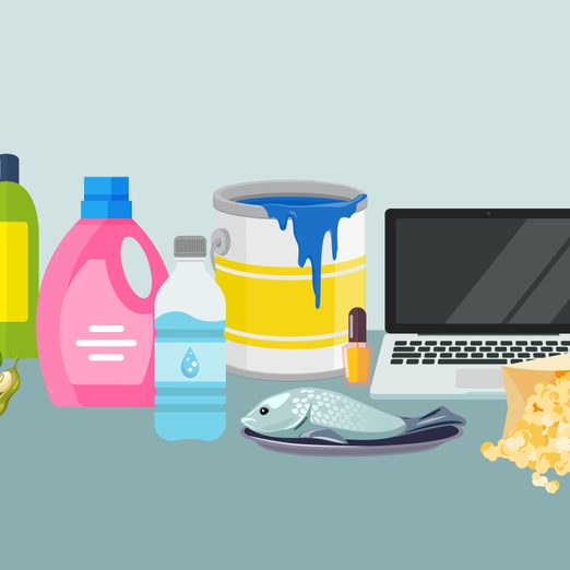 What Are Endocrine Disruptors? How These Chemicals Affect the Body
